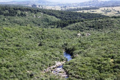 5160-Small-Mountain-Farm-in-the-Aigua-Area