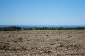 4232-Last-Available-Development-Land-with-Unbeatable-Sea-View-2978
