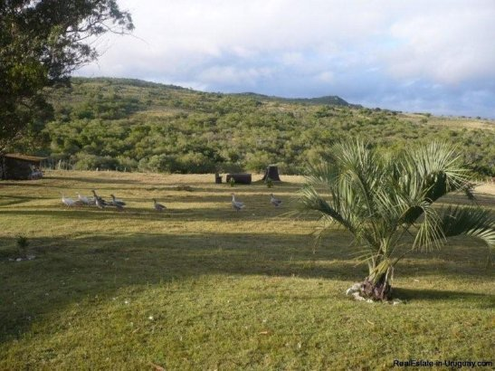 5153-Agroland-with-Ranch-in-the-Las-Canas-Mountain-Area-2722