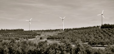 Wind Farms in Uruguay