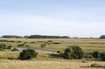 5145-Exclusive-Seaside-Land-Project-near-Jose-Ignacio-4223