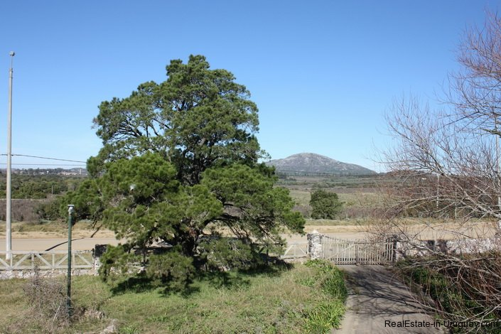 5298-Small-Ranch-close-to-Hills-Pan-de-Azcar-4118