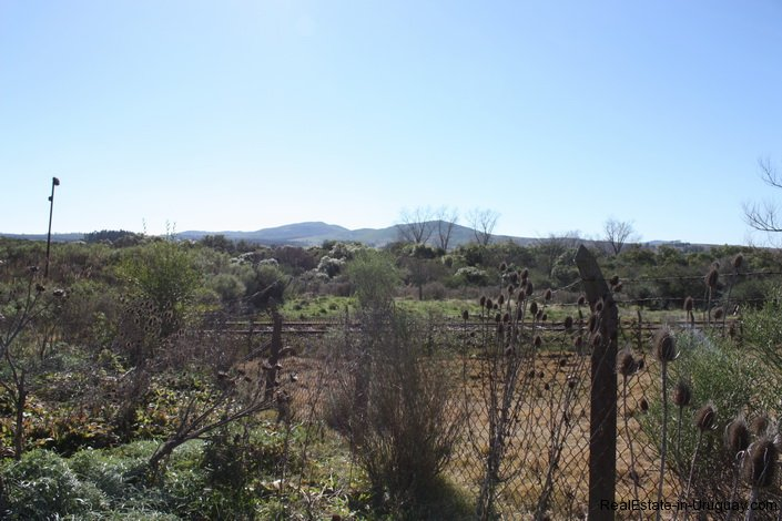 5298-Small-Ranch-close-to-Hills-Pan-de-Azcar-4120