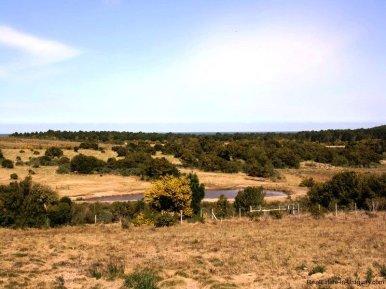 5338-Idyllic-Ranch-2km-from-the-Sea-and-Jose-Ignacio-4411