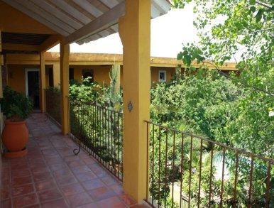 5038-Modern-Designer-House-4563