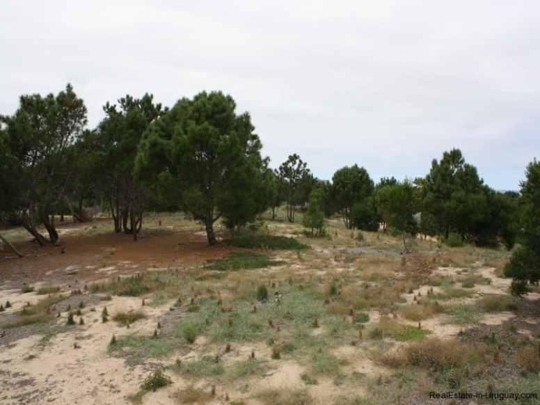 5570-Land-in-Laguna-Escondida-Jose-Ignacio-4455