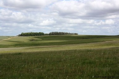 5536-Modern-Small-Ranch-on-5-Ha-4479