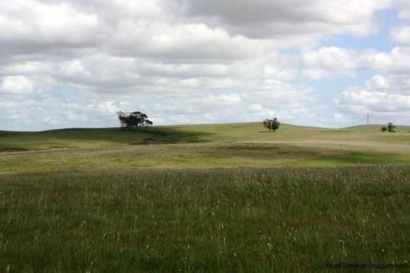 5536-Modern-Small-Ranch-on-5-Ha-4480