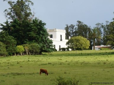 Fields-of-Historical-Estancia-near-Casupa