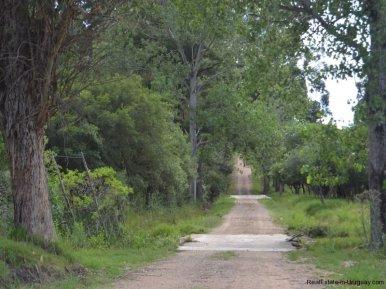 Street-to-Farm-House-San-Luis-Montevideo