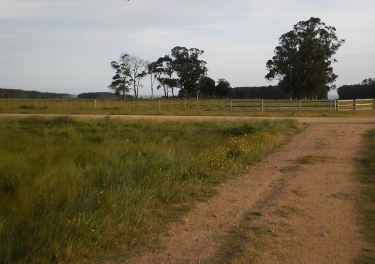 5218-Road-to-35Ha-Land-close-to-Las-Garzas-Rocha