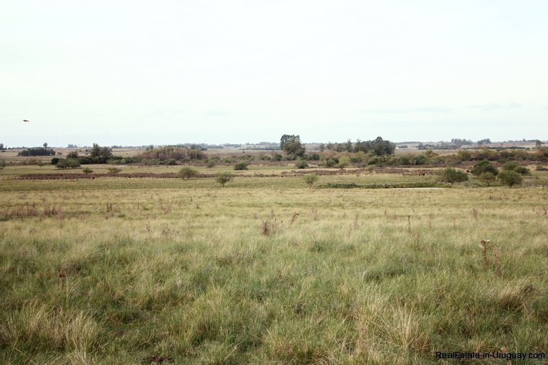 5603-Views-of-Agro-Field-San-Jacinto-near-Montevideo