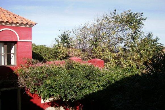 4608-Trees-of-Villa-in-Montoya-6