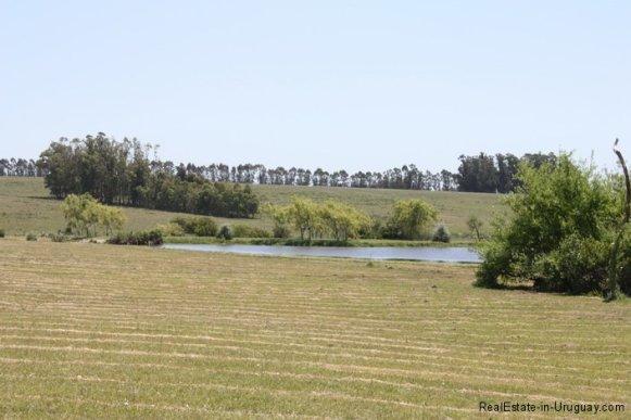4693-Chacra-San-Carlos-Area-View