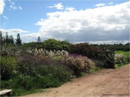 5687-Landscape-of-Large-Estancia-at-Polo-Medellin