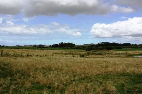 5089-Land-of-Chacra-Jose-Ignacio-Area