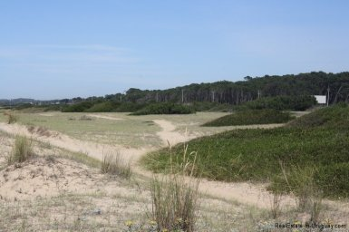 5718-dunes-of-Beachfront-Land-in-San-Vicente