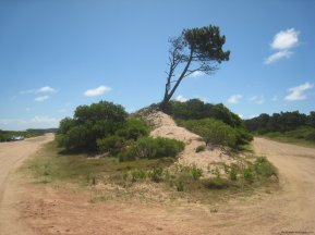 5745-Eastcorner-of-Seaside-Plots-Chihuahua-beach