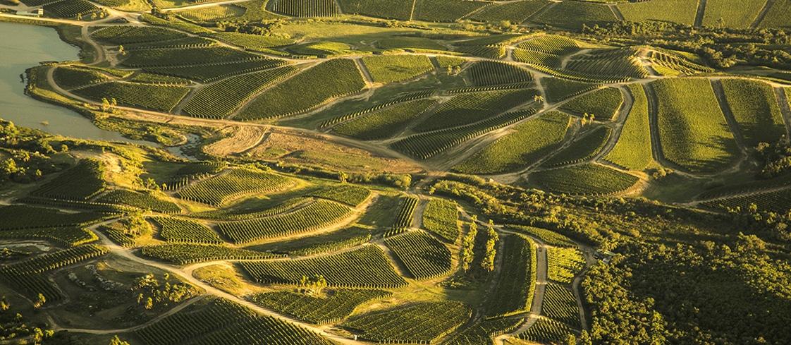 View of Bodega Garzon Vineyards