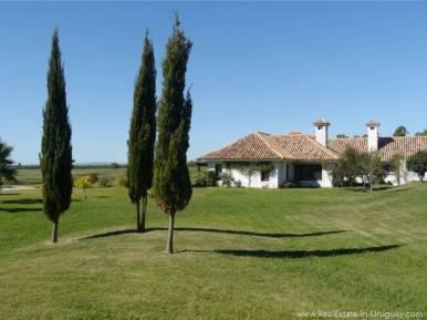 Estancia on 397HA Land Garden with Trees