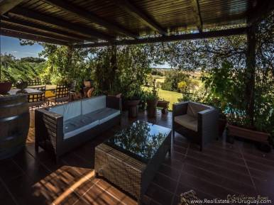 Beautiful Estancia with Vineyard - Terrace