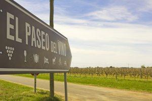 Wine Trail of Uruguay Wineries