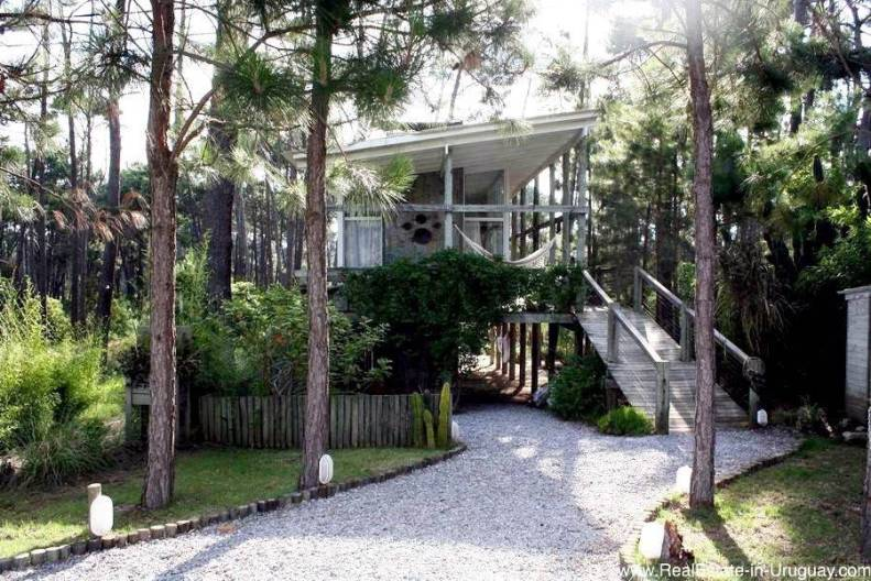 Small Designer House in the Woods of Montoya