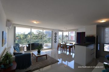 New Apartment for Rent on Roosevelt Avenue in Punta del Este