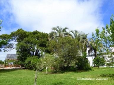 6509 Historic Renovated Farm House by Pueblo Eden - Garden and Plants