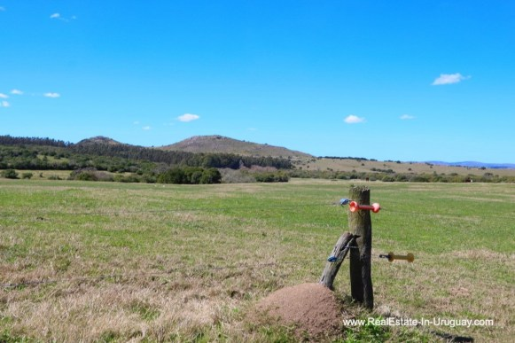 Land of 97 Hectares Farm near Pueblo Eden