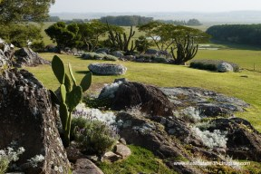 Rocks of Exclusive Plot within Fasano near La Barra