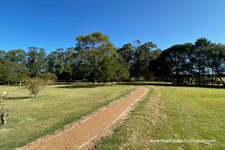 Driveway to Ranch on 8 Hectares in Jose Ignacio
