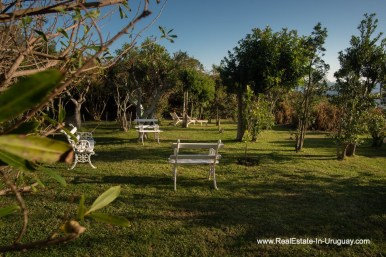 Garden of House on a Double Lot with Sea Views in Punta Ballena