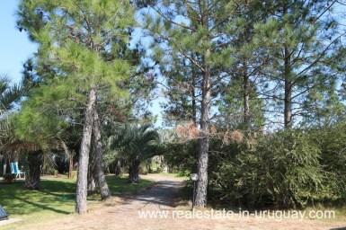 6497 Countryside Property between Jose Ignacio and Garzon - Garden Entrance