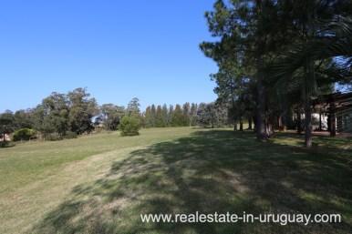 6497 Countryside Property between Jose Ignacio and Garzon - Garden
