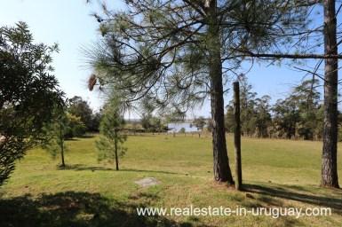 6497 Countryside Property between Jose Ignacio and Garzon - Garden2
