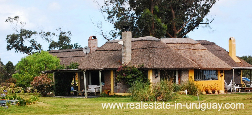 House of Farm with 95 Hectares just 15 Minutes from Jose Ignacio