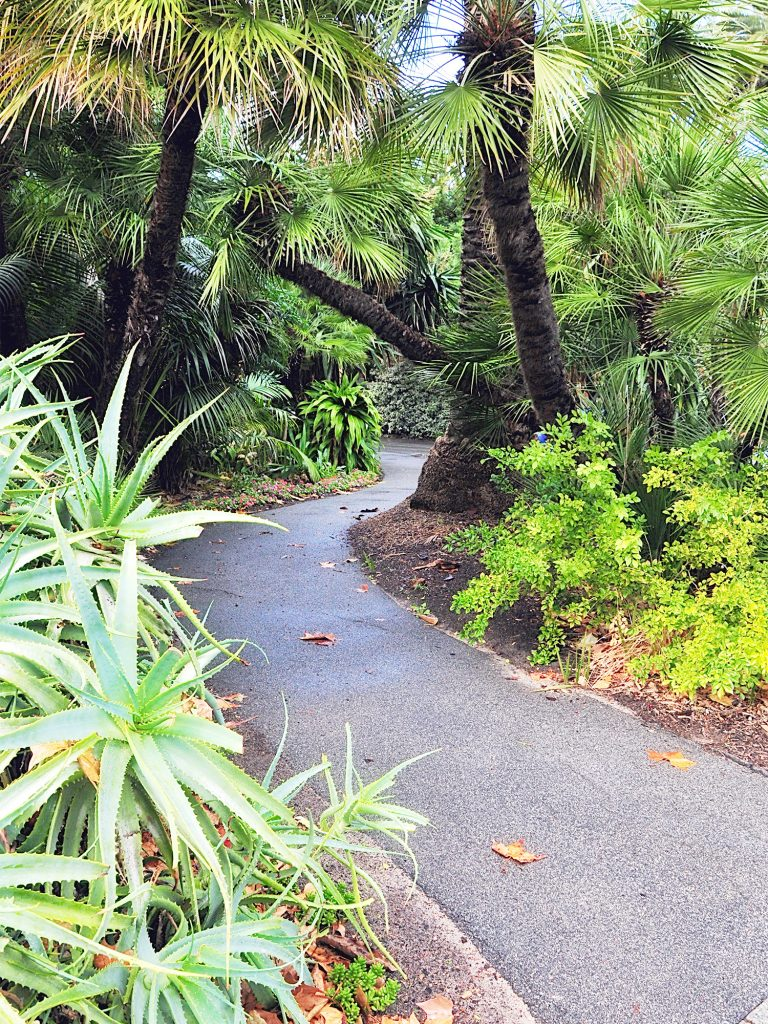 Tropical Garden Design Ideas To Inspire Your Outdoor Space ... on Tropical Backyard Landscaping  id=33066