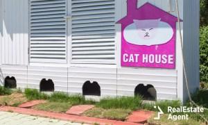 cat villa