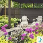 beautifull backyard garden