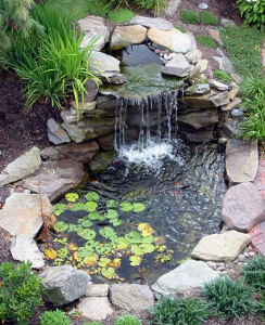 backyard Decorative Pond