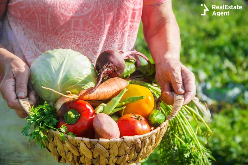 grandmother with a basket full of vegetables