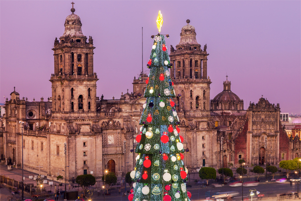 Beautiful Christmas tree in Mexico