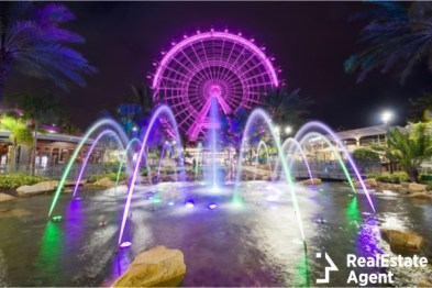 the orlando florida eye