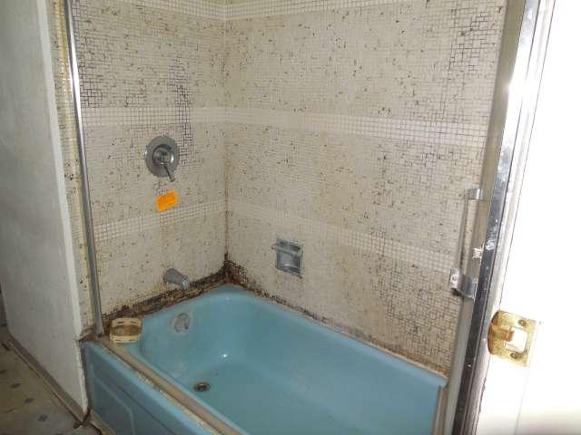 main-bath-561-881695-1