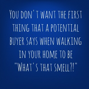 odor-pic-300x300 Lingering Odors and Listing Your Home