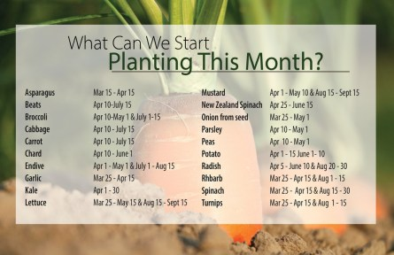 planting Want to know when to plant what?