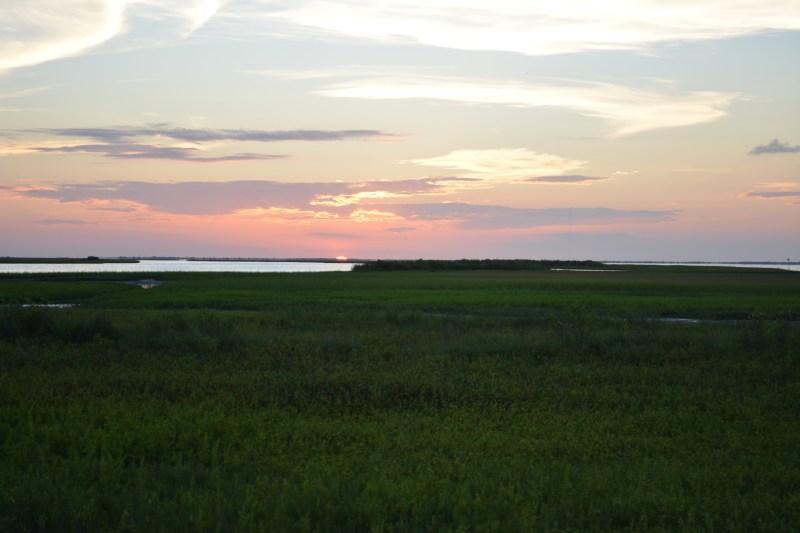 Galveston Island Salt Marsh Sunset