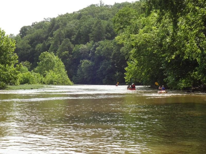 Rappahannock River snakehead