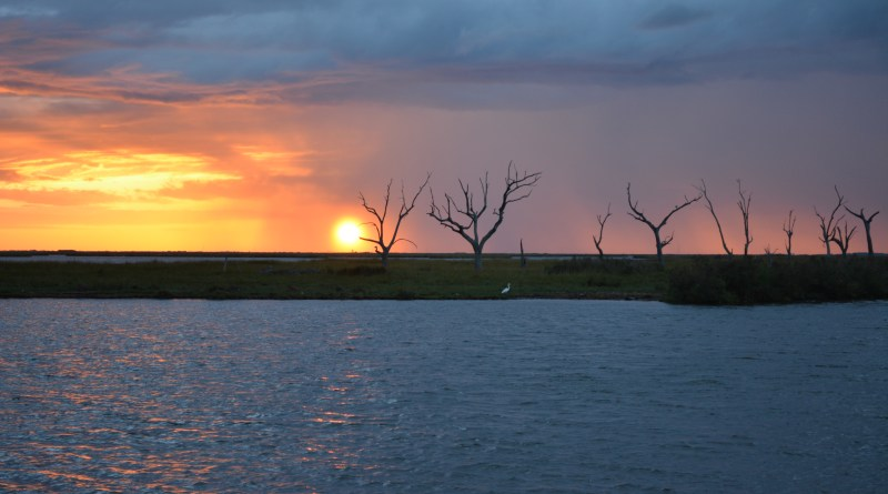 South louisiana amazing salt marsh sunrise.